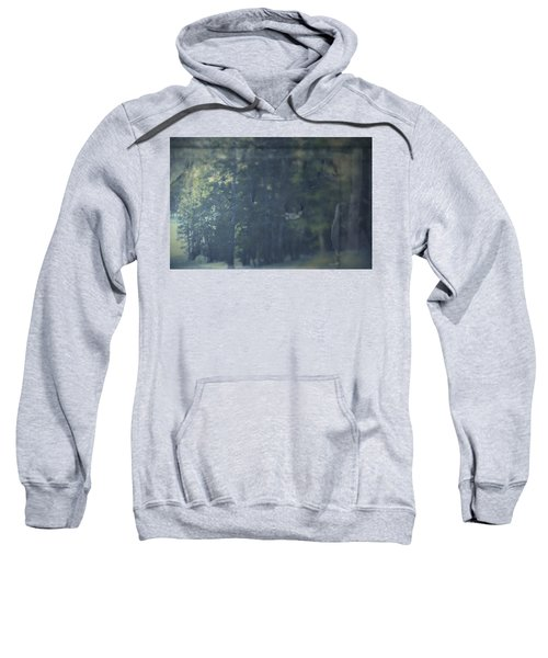 Collect Sweatshirt