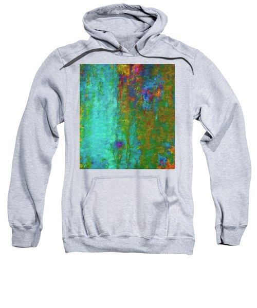 Color Abstraction Lxvii Sweatshirt