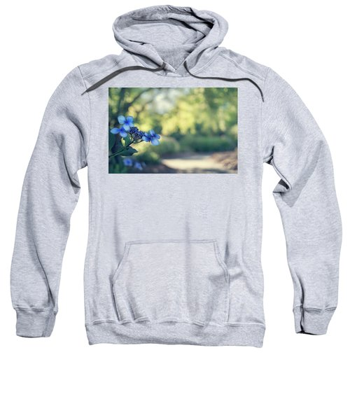 Color Me Blue Sweatshirt