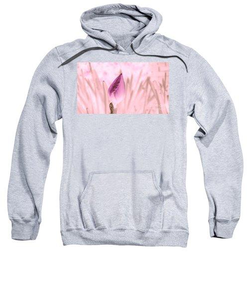 Color Trend Flower Bud Sweatshirt