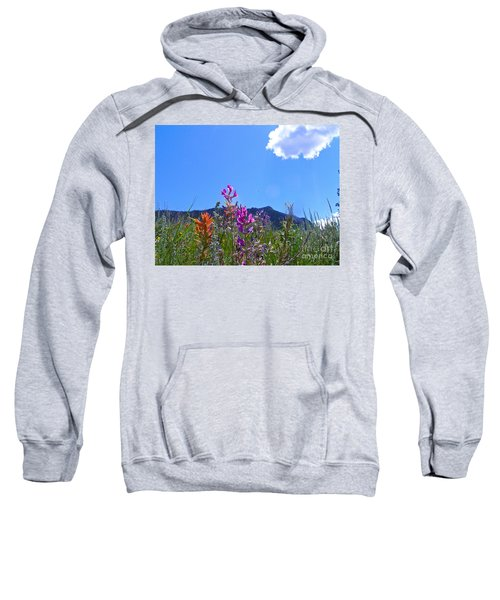 Colorado Colors Sweatshirt