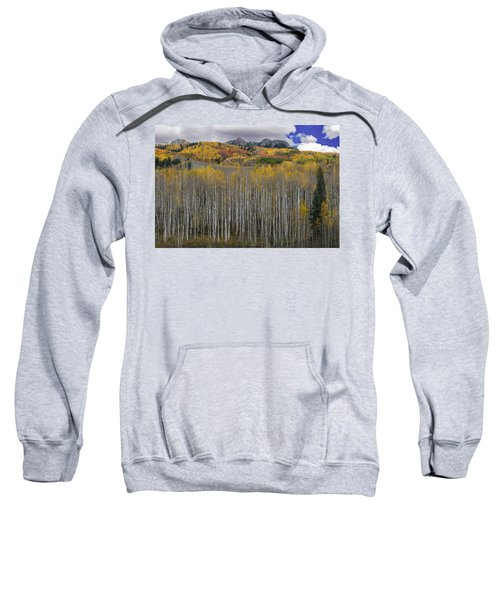 Colorado Splendor Sweatshirt by Gary Lengyel