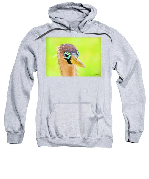 Colorful Female Anhinga Sweatshirt