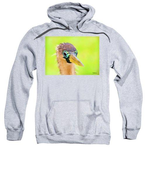 Colorful Female Anhinga Sweatshirt