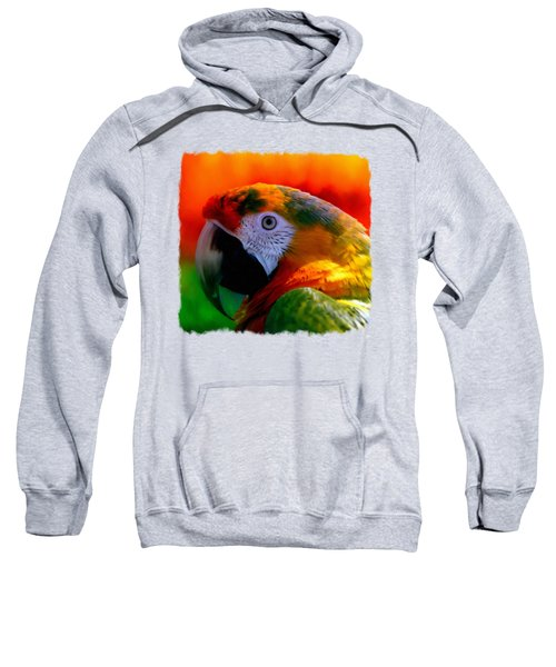Colorful Macaw Parrot Sweatshirt by Linda Koelbel