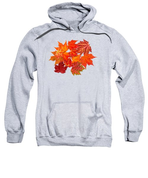 Colorful Maple Leaves Sweatshirt by Christina Rollo