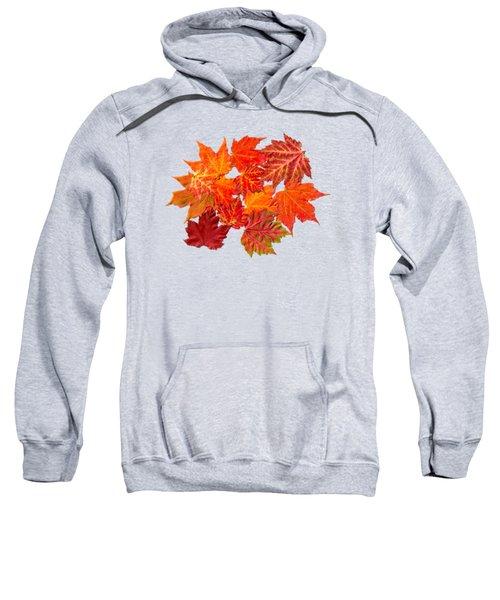 Colorful Maple Leaves Sweatshirt