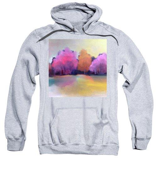 Colorful Reflection Sweatshirt