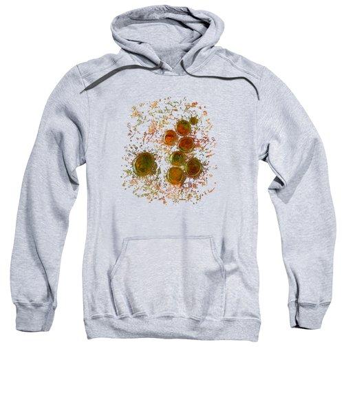 Colors Of Nature 10 Sweatshirt