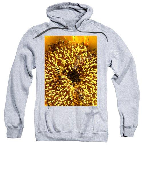 Colour Of Honey Sweatshirt