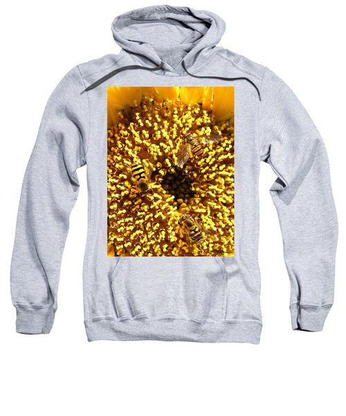 Colour Of Honey Sweatshirt