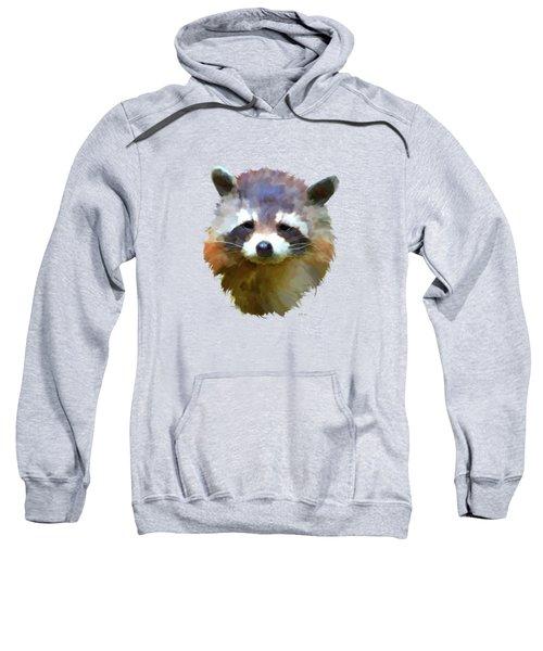 Colourful Raccoon Sweatshirt