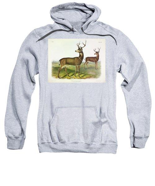 Columbian Black-tailed Deer Sweatshirt