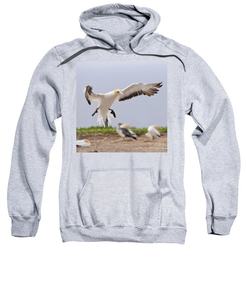 Sweatshirt featuring the photograph Coming In To Land by Werner Padarin