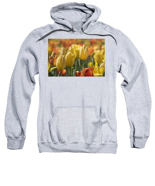 Sweatshirt featuring the photograph Coming Up Tulips by Jeanne May