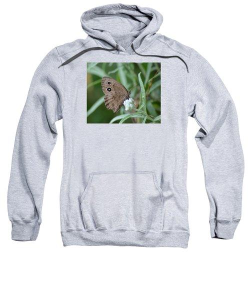 Common Wood Nymph Sweatshirt