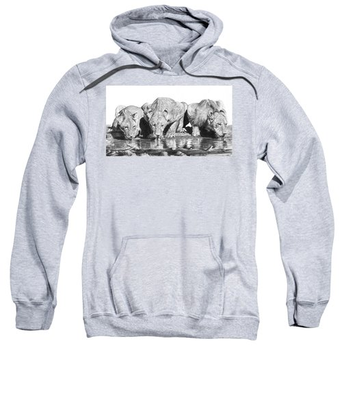 Cool For Cats Sweatshirt