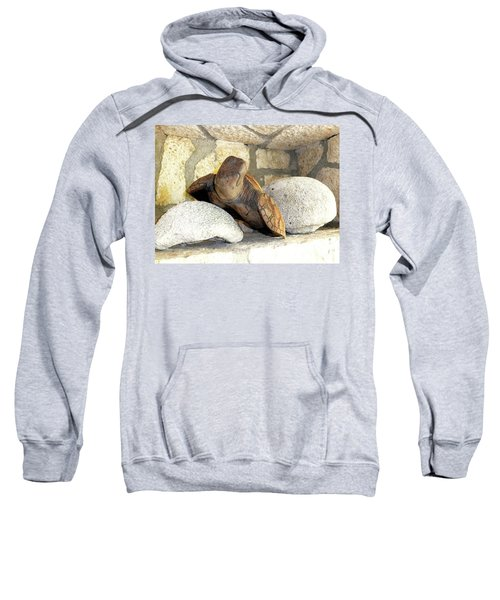 Sweatshirt featuring the photograph Coral And Turtle Decor by Francesca Mackenney