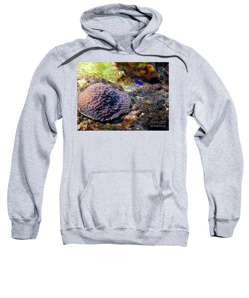 Sweatshirt featuring the digital art Coral Art Cu 3 by Francesca Mackenney