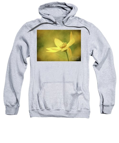 Coreopsis Sweatshirt