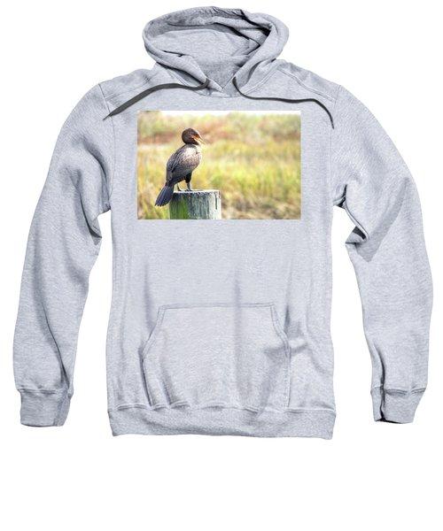 Cormorant Sweatshirt