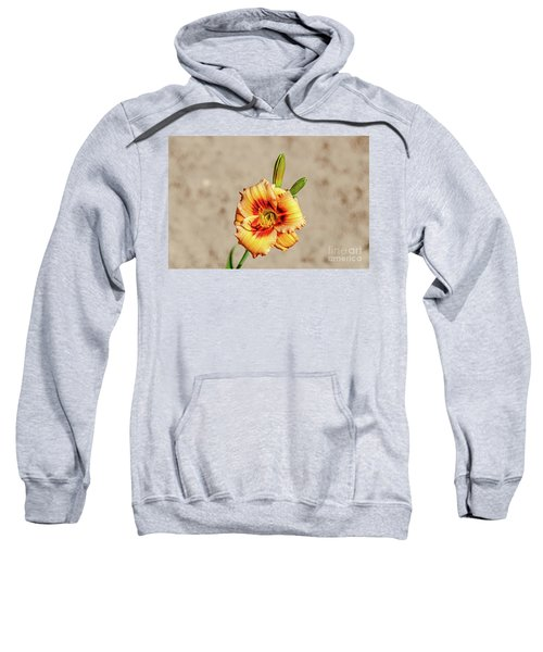Cosmic Hummingbird Sweatshirt