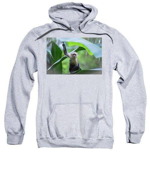 Costa Rica Monkeys 1 Sweatshirt