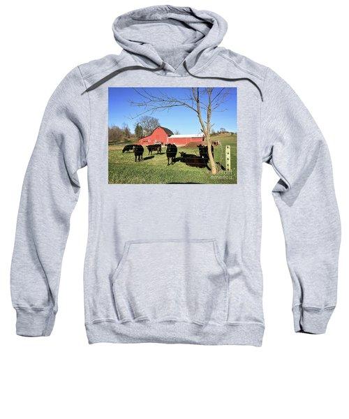 Country Cows Sweatshirt
