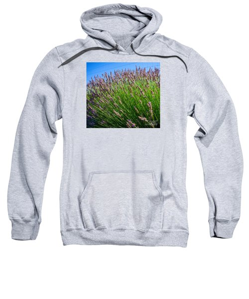 Country Lavender I  Sweatshirt