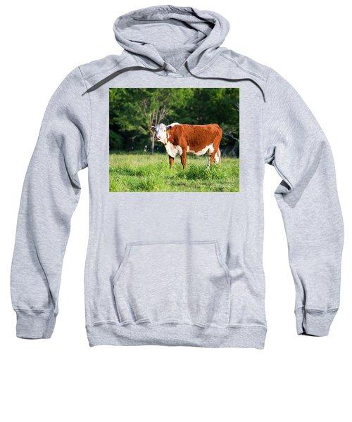 Cow #1 Sweatshirt