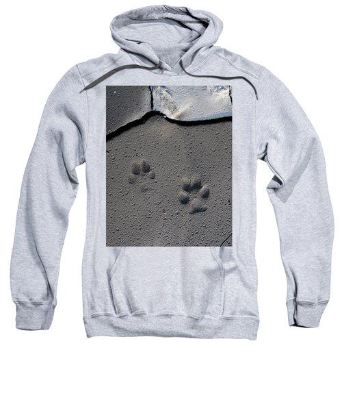 Coyote Tracks Sweatshirt