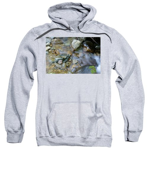Creek On Mt Tamalpais Sweatshirt