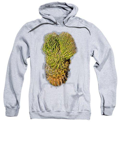 Crested Saguaro V45 Sweatshirt