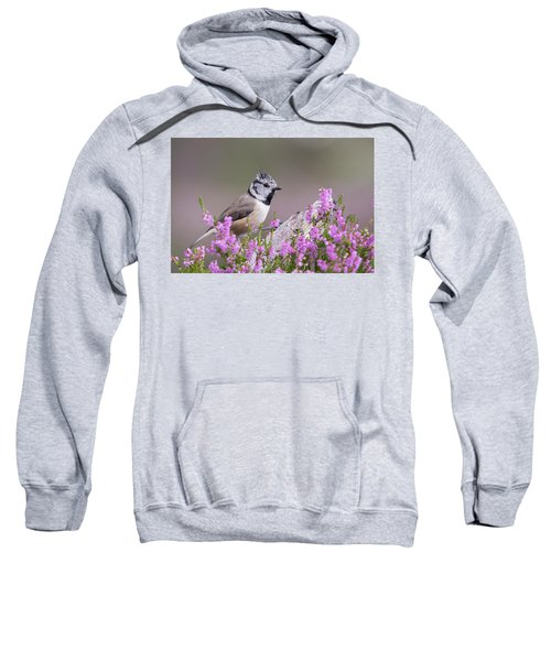 Crested Tit In Heather Sweatshirt