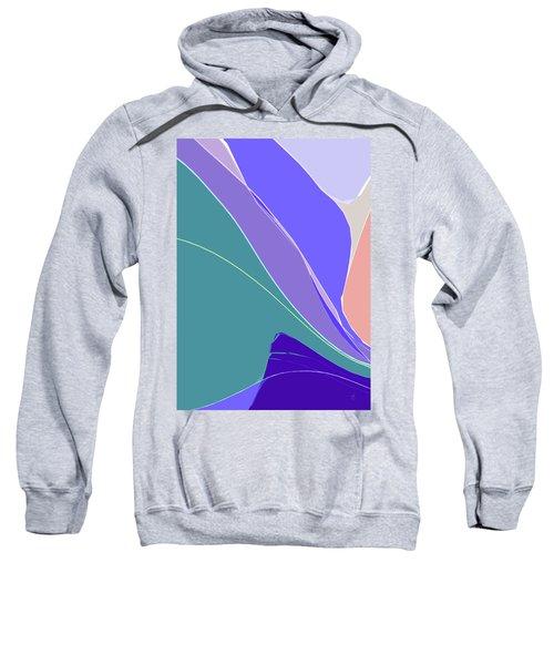 Crevice Sweatshirt