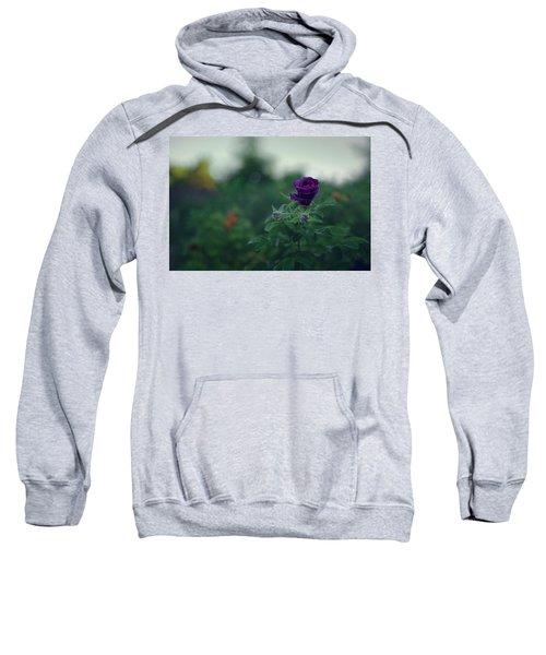 Cross-season Sweatshirt