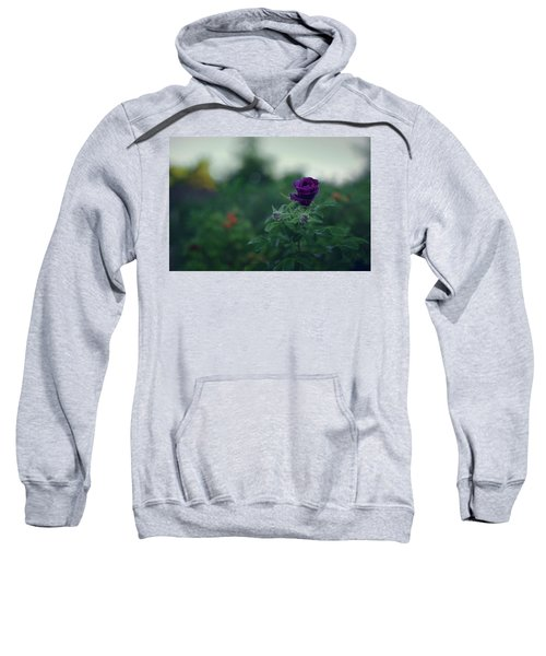 Cross-season Sweatshirt