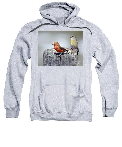 Crossbills Sweatshirt