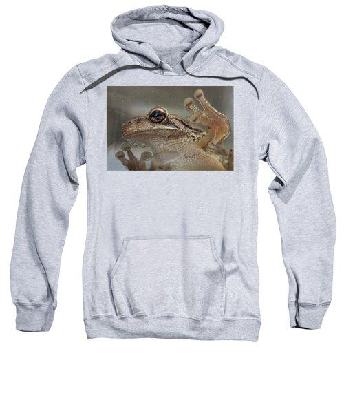 Cuban Treefrog Sweatshirt