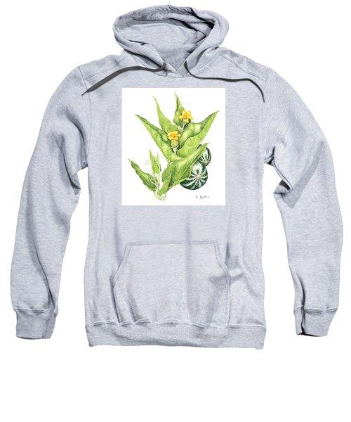 Cucurbita Foetidissima Sweatshirt