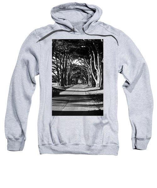 Cypress Tree Tunnel Sweatshirt