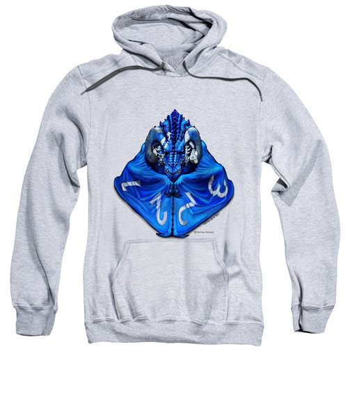 D4 Dragon T-shirt Sweatshirt
