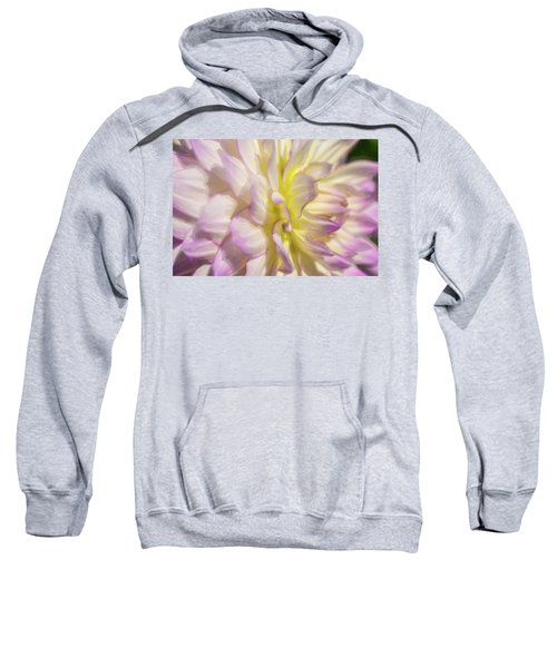 Dahlia Study 5 Painterly  Sweatshirt