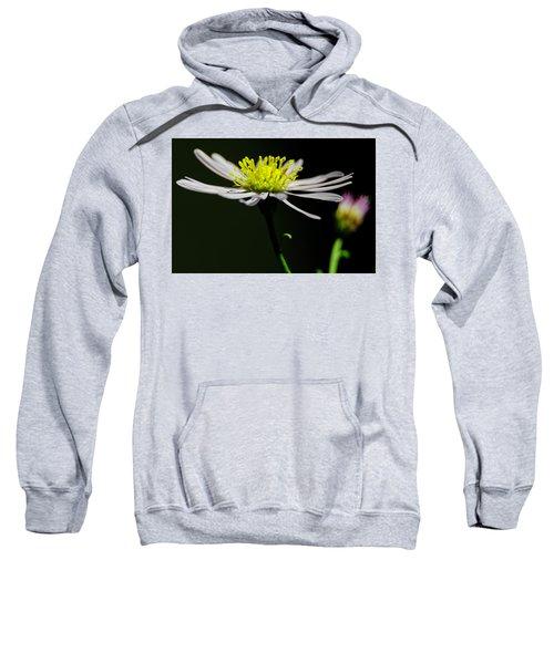 Daisy Center Stage Sweatshirt
