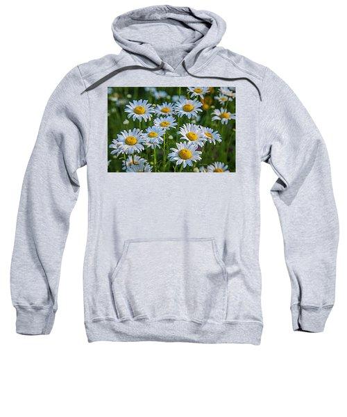 Daisy Dew Sweatshirt