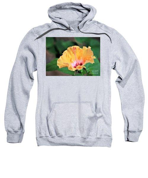 Daisy Mae Sweatshirt