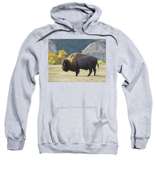 Dakota Badlands Majesty Sweatshirt