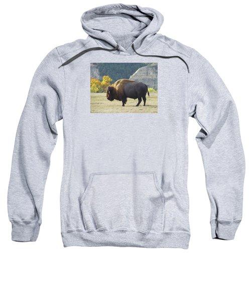 Dakota Badlands Majesty Sweatshirt