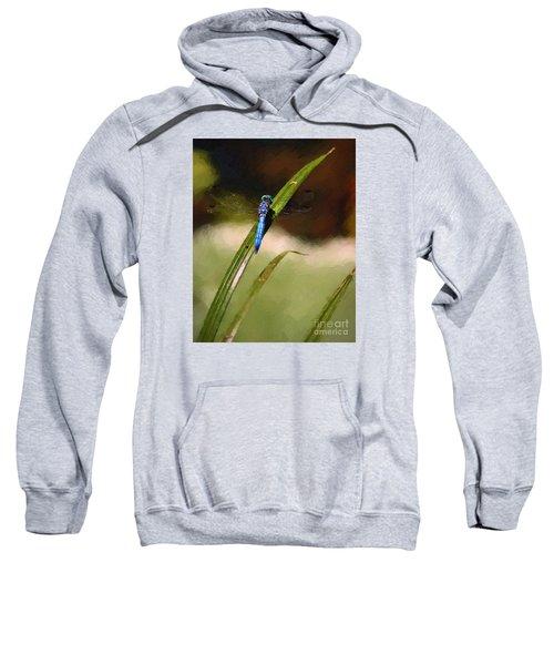 Damsel Sweatshirt