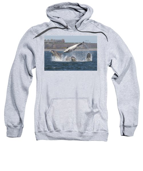 Dance Of The Dolphins Sweatshirt